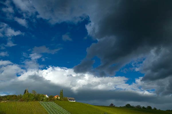 Dunkle Wolken und Weinberg
