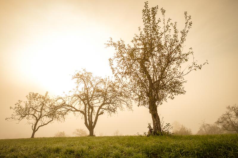 Landschaftsfotografie Tipps