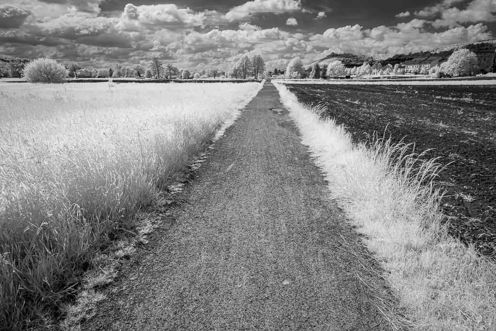 Feldweg in Schwarzweiß Infrarot