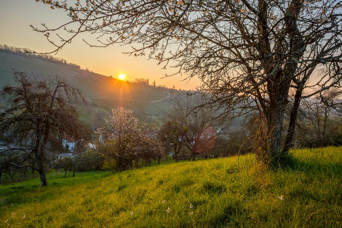 Mein schönstes Landschaftfoto Frühling 2020
