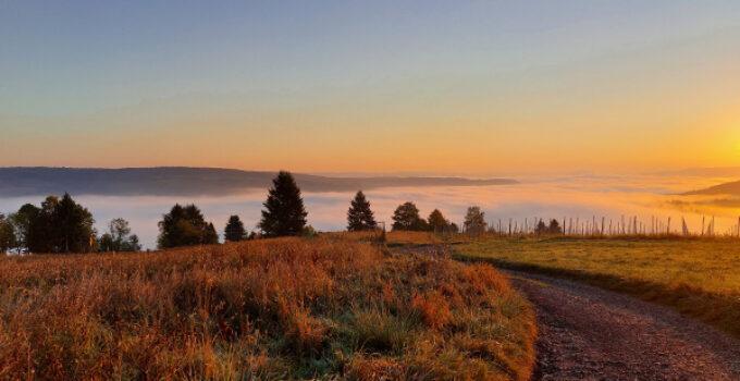 Landschaftsfotografie mit dem Smartphone